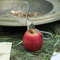 Manzana y tijeras. Cruces de Mayo